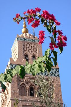 Marrakech, Morocco, By being self-sufficient, you gain creativity and set off money systems, I live without money since 22 years, therefore, my  contribution 2  pollution is 0, I protect life eating only vegan organics instead of death tortured animals, go green 4 all you do and live, support the system and die 4ever, https://ninaohman4life.wordpress.com/2015/03/04/65/, https://stargate2freedom.wordpress.com/2016/06/26/actual-corrupted-governments-money-systems,