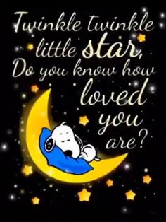 Charlie Brown Quotes, Charlie Brown And Snoopy, Good Night Friends, Good Night Wishes, Peanuts Cartoon, Peanuts Snoopy, Good Night Image, Good Morning Good Night, Goodnight Snoopy