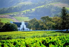 Experience the Cape Winelands South African Wine, Cape Dutch, Namibia, Le Cap, Cape Town South Africa, By Train, Wine Country, Vacation Destinations, Places To See