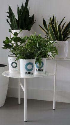 Being green is what we mean! Www.ogreen.eu #ogreen