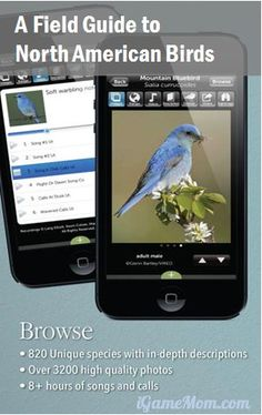 Audubon Birds: Encyclopedia of North American Birds. The app includes over 800 birds, allowing search by shape, sound, nest, and many other features. Learning Apps, Kids Learning Activities, Home Learning, Hands On Activities, Science Activities, Outdoor Water Activities, Outdoor Learning, Audubon Birds, Animal Science
