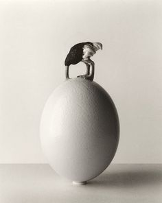 Chema Madoz, Oeuvres Récentes, Photographie - Galerie Esther Woerdehoff, Paris, France