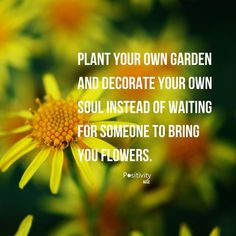 Plant your own garden and decorate your own soul instead of waiting for someone to bring you flowers.  #positivitynote