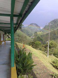 Farm in colombia