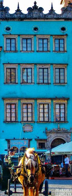 Barczyków House - Warsaw Poland