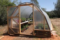 4.Greenhouse pallets