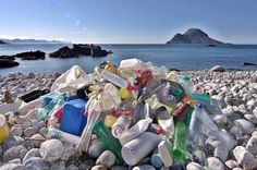 GIDKP Ajak Pemerintah Kabupaten/Kota di Indonesia Rumuskan Pengurangan Sampah Plastik