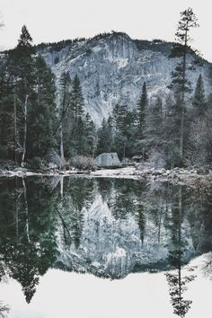 miss-lady-bird:xglan:Yosemite | by { tonystx }  Staahhhppp