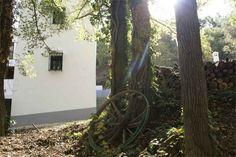 Una ventana a la naturaleza, en Archidona, Málaga Molino de madaura .es