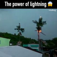 Power Of Lightening. Power Of Lightening. Power Of Lightening. Power Of Lighten Natural Phenomena, Natural Disasters, Weird Facts, Fun Facts, Images Gif, Wild Weather, Tornados, Thunderstorms, Amazing Nature