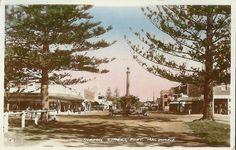 Horton Street, Port Macquarie Port Macquarie, Postcards, Coast, Explore, Live, Street, Painting, Beautiful, Aussies