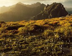 Western Arthurs by Peter Dombrovskis
