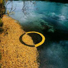 Land artist circle leaves nature art Martin Hill X Philippa Jones