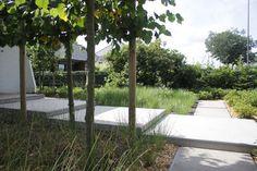 Decking, Garden Design, The Outsiders, Sidewalk, Gardening, Flowers, Plants, House, Outdoor
