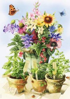 Zdjęcie nr 49 w galerii * Images Marjolein Bastin * – Deccoria. Decoupage Vintage, Vintage Diy, Art Floral, Deco Floral, Marjolein Bastin, Nature Sketch, Nature Artists, Dutch Artists, Drawing