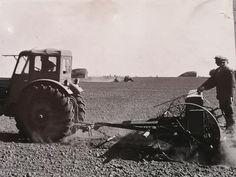Tractors, Monster Trucks, Retro, Vehicles, Car, Retro Illustration, Vehicle, Tools
