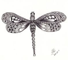 Zentangle Animals   Google Image Result for ...   zentangle - nature and animals