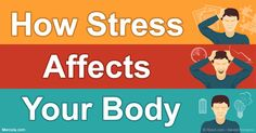How Stress Affects Your Body, and Simple Techniques to Reduce Stress and Develop Greater Resilience