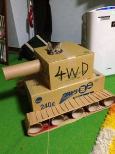 Adorable Kitten In Cardboard Tank. He's at war with our hearts.. cat, cardboard, tank, cute, war, Animals, kitten, cute animals, adorable