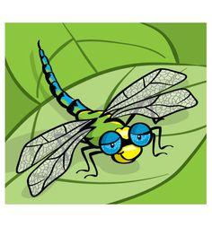 Dragonfly © Jackie Stafford