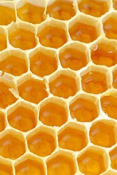 honeycomb by laurentiu iordache Yellow Aesthetic Pastel, Orange Aesthetic, Rainbow Aesthetic, Aesthetic Colors, Pastel Yellow, Aesthetic Images, Shades Of Yellow, Aesthetic Backgrounds, Mellow Yellow