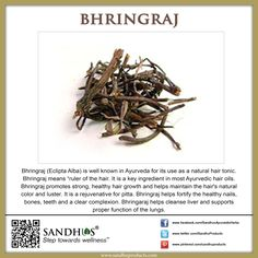 #Health benefits of #Bhringraj #Ayurveda #SandhuProducts #Livermore www.sandhuproducts.com