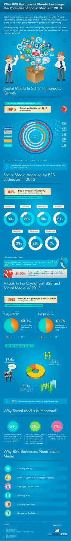 ¿Porqué las Empresas B2B deberían aprovechar más el Potencial de las Redes Sociales? Real Business Rescue, 2013