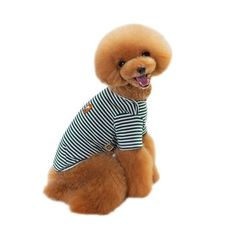 New cheap pet gift uploaded at SketchGrowl: Spring Dog Outfit Gifts For Pet Lovers, Pet Gifts, Dog Lovers, Online Pet Supplies, Dog Supplies, Cheap Pets, Puppy Clothes, Dog Sweaters, Dog Houses
