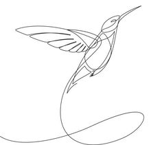 Best Continuous Line Drawing Bird Illustrations, Royalty-Free Vector Graphics & Clip Art - iStock Simple Bird Drawing, Bird Line Drawing, Line Drawing Tattoos, Simple Line Drawings, Bird Drawings, Simple Bird Tattoo, Drawing Birds, Hummingbird Drawing, Hummingbird Tattoo