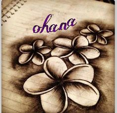 Photo I edited to make something for my cousin an I. I saw the flowers which are beautiful whoever drew them an she made a photo with the word ohana which means family. An no one gets left behide:) ill be waiting till  April 2015 to get it with her when she turns 18 :)