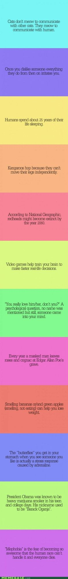 Psycho Facts  By the way- I'm the last fact