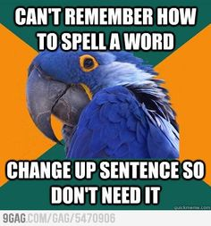 Paranoid parrot ! Do this all the time