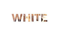 A Definitive Guide To WhitePrivilege