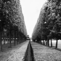 Parc de Sceaux in Sceaux, France. Just outside of Paris is a garden that captures my heart and imagination. I love this place with an appreciation for the patience it takes to create it.