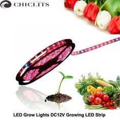 Like and Share if you want this  5050 Grow Led Strip Tape IP20 IP65 Waterproof Led Grow Lights DC12V Greenhouse LED Plant Lights 1m,2m,3m,4m,5m Red Blue 3:1, 4:1     Tag a friend who would love this!     FREE Shipping Worldwide     Get it here ---> https://diydeco.store/5050-grow-led-strip-tape-ip20-ip65-waterproof-led-grow-lights-dc12v-greenhouse-led-plant-lights-1m2m3m4m5m-red-blue-31-41/    #tools #DIY #lights #decoration #renovation #materials