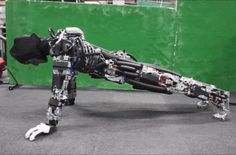 The Arnold Schwarzenegger of Robots Won't Kill You, It Just Works Out and Sweats | Motherboard
