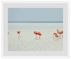 Flamingos Wohnzimmerwand WestwingNow