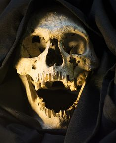 UB_Skull_14.jpg