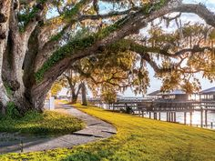 7 Reasons You'll Fall in Love with Fairhope, Alabama   SouthernLiving