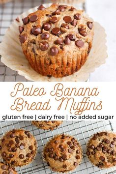 These easy paleo banana bread muffins are made with no added sugar are oil free dairy free and are made using simple ingredients like almond flour nut butter eggs and chocolate chips! Made in less than thirty minutes. Dairy Free Bread, Dairy Free Snacks, Dairy Free Breakfasts, Gluten Free Muffins, Sugar Free Muffins, Healthy Banana Muffins, Muffins With Almond Flour, Healthy Banana Recipes, Paleo Pumpkin Muffins