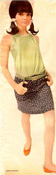 The Mod Look - Linda Morand