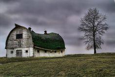 Walton, Kentucky barn -- the middle is lower -- like a camel.