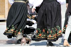 Dog with folk costume, Norway :)