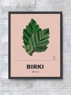 Birki via UNDRA. Click on the image to see more!