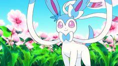 Pokémon x y - gif Pokemon Gif, Eevee Pokemon, Eevee Evolutions, Type Pokemon, Pokemon Photo, Pokemon Stuff, Evolution Pokemon, Pokemon Pictures, Catch Em All