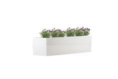 Polyester plantenbak Lotus 90x25x20 cm | Hoogglans zuiver-wit