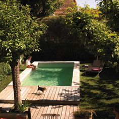 Discover 27 small backyard pool ideas for your inspiration. These small inground and above ground swimming pools will transform your backyard into an outdoor oasis. Small Backyard Gardens, Big Backyard, Small Backyard Landscaping, Small Backyards, Landscaping Ideas, Backyard Ideas, Pergola Ideas, Patio Ideas, Desert Backyard