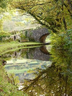 Reflections on the Monmouthshire and Brecon Canal, Wales as seen by Pam Reed.