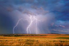 Lightning Storm Farmland Landscape | Near Dordrecht, Stormberg district, Eastern Cape Highlands