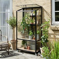 Urban Garden Are you living in the city but would love to do more gardening? We have some great city greenhouses for you that fit on the balcony, patio, porch, terrace, or small backyard. Cheap Greenhouse, Backyard Greenhouse, Mini Greenhouse, Greenhouse Gardening, Greenhouse Ideas, Urban Gardening, Greenhouse Wedding, Small Glass Greenhouse, Container Gardening